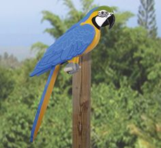 Life-Size Blue Macaw Wood Pattern Have your own pet tropical bird without all the mess and noise! Wood Craft Patterns, Wooden Pattern, Diy Wood Projects, Woodworking Projects, Vinyl Projects, Garden Projects, Blue Macaw, Bird House Feeder, Christmas Signs Wood