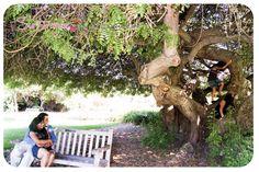 Ricardo & Veronica | Engagement | PHOTOGRAPHY BY SURI DANAE