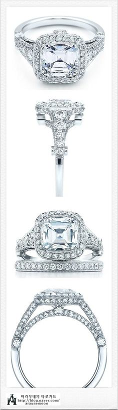 This is my dream ring. The Tiffany legacy with graduated side stones. Too bad it usually comes as a 2.5 carat = $61,000.....