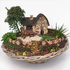 Country Fairy Garden #minijardines
