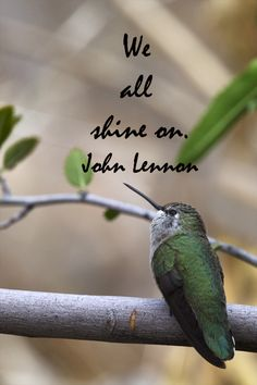 """""""We all shine on.""""  -- John Lennon – On image by Florence McGinn -- Help your creativity shine.  Publish a fusion of your travel, writing, and photography.  Explore how-to strategies at http://www.examiner.com/article/publish-a-creative-fusion-of-your-travel-writing-and-photography"""