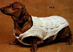 NEW! Dog Sweater knit pattern from Things to Knit & Crochet, Leaflet 2576.
