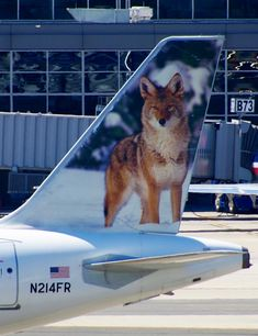 Frontier Airlines Airbus A320-214 N214FR 'Carl the Coyote'