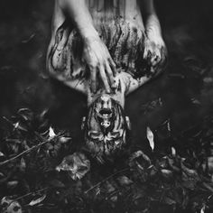 David Talley – Untitled • Dark Beauty