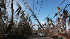 A tiny utility company linked to a prominent Trump campaign donor has been awarded the massive contract to help rebuild Puerto Rico.