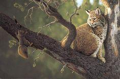 """Out on a Limb"" -Tom Mansanarez Tom Mansanarez wildlife art portraying mountain lions, bobcats, deer, elk, moose, sheep and buffalo. - Miniatures"