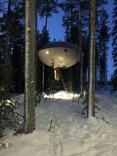 UFO room treehotel