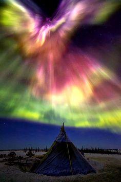 Aurora borealis more blue sky alaska cielo azul alaska alaska landscapes and alaska documentary paisajes y documental de alaska All Nature, Science And Nature, Amazing Nature, Beautiful Sky, Beautiful Landscapes, Beautiful Pictures, Ciel Nocturne, Northen Lights, Natural Phenomena