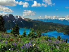 Dug Up, Pure Simple, Happy Soul, True North, The Province, Time Capsule, British Columbia, Vancouver, Places To Visit