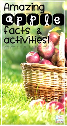 Fun Apple Facts and Activities!