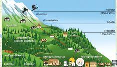 Ausztria és Szlovénia - Földrajz 7-8. osztály VIDEÓ - Kalauzoló - Online tanulás Desktop Screenshot