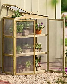 My baby greenhouse, until I find a way to drop a couple thou on a warm greenhouse.  From Gardeners Supply Co.