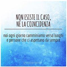 #cammino #coincidenze #sincronicità #tistavoaspettando #percorso #pensierieparole #frasedelgiorno #consapevolezza #segnidalluniverso #spiritualitatradotta