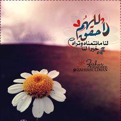 DesertRose,;,يارب ياكريم,;,
