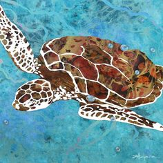 Island turtles photo series by Marcy Ann Villafana at ExhibitionNest.com to see more visit www.Villafanaart.com Kate Shaw, Photo Series, Mosaic Art, Turtles, Quilling, Caribbean, Ann, Fiber, Collage