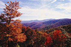 Appalachian Mountain Fall