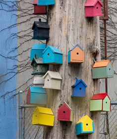 Lots of colourful bird boxes nailed to a tree.