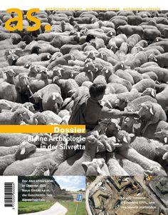 Archäologie Schweiz : Mitteilungsblatt von Archäologie Schweiz 2013
