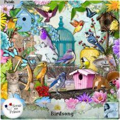 Birdsong Kit (PU) by Louise