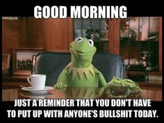 Stuff from the Outside Funny Good Morning Memes, Good Morning Funny Pictures, Good Morning Picture, Morning Humor, Morning Images, Funny Weekend, Weekend Quotes, Work Memes, Work Humor