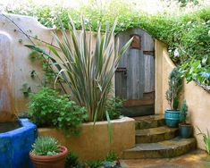 Garden designs in Mexican style look elegant and rich, focusing on people enjoying outdoor living spaces. Backyard designs in Mexican style reflect the Hispanic cultures and create welcoming outdoor r