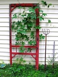 Turn an old screen door into an outdoor trellis.