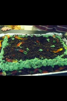 Gabes dirt and worm cake