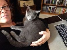 Zak is always very interested in my work. Russian blue, 8 months old.