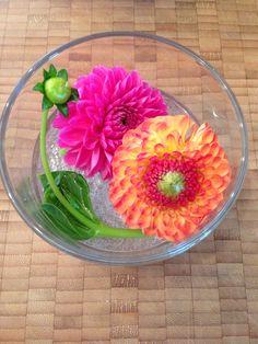 Deko für Bistrotische. Dahlien orange/pink