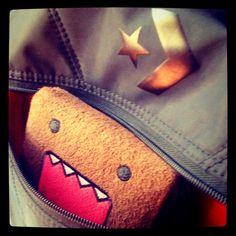 just great now domo snooping in my backpack