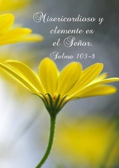 Salmo 103:8