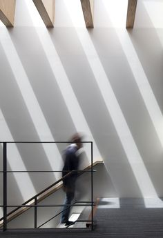Gallery of Katsuobushi Kumiai Office / Mizuno architecture design association - 4 - Houses interior designs Japanese Architecture, Architecture Office, Architecture Details, Light In Architecture, Skylight Design, Ceiling Design, Blitz Design, Design Commercial, Office Interior Design