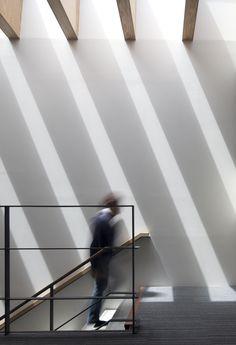 Gallery - Katsuobushi Kumiai Office / Mizuno architecture design association - 4
