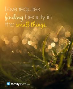 Love requires finding beauty in the small things.