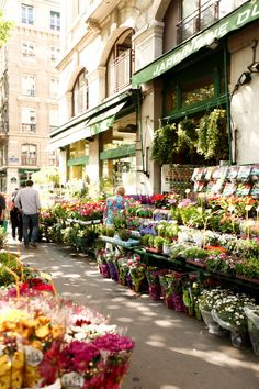 During spring, wandering around the Quai de la Mégisserie, with all its pets and flower stores.