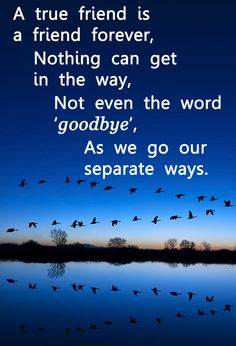 Another great quote for your school #LeaversAssembly. http://www.learn2soar.co.uk/leavers-assemblies