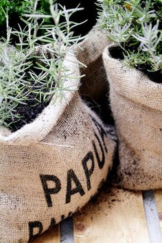 Coffee bag planter pots. I feel like this is perfect for me and my coffee obsession :)