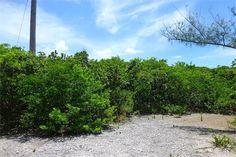 Land for Sale at Lot 29, Block 52, Section D Rainbow Bay, Eleuthera, Bahamas