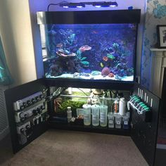 SMART way to install marine/salt aquarium... I'll keep it in mind!