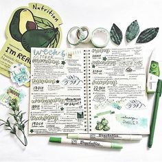 Do you like avocado?  Today's feature is by @bobatea.studies!  // Use the tag #bulletjournalss for a chance of being featured. Use the code BULLET10 for 10% off at @missrosieshop, @kawaiipenshop and @bricksxcastle (they all provide free worldwide shipping!). Remember to shop around! Check out my new blog: @behindthejournal!  • • •  • • • • • •   #bulletjournalss #bujo #bulletjournal #study #studyblr #studygram #studyspiration #motivation #stationery #planner #pens #bulletjournals #studyti...