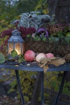 Toemar is Mississauga's one-stop garden centre. We offer a full range of landscape and garden supplies and products to fit the needs of our customers. Autumn Garden, Autumn Home, Witch's Garden, Garden Table, Autumn Fall, Halloween Veranda, Seasons Of The Year, Harvest Time, Harvest Moon