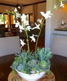 We just love this simple and chic succulent and orchid arrangement. Pictured here in all faux real to the touch succulents and 3 tall orchids, river rock, petri