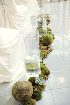 Moss, rock, and succulent lined aisle.