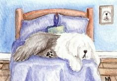 3 Old English Sheepdog, Art World, Concept Art, Sheep Dogs, Watercolor, Drawings, Illustrations, Shapes, Dogs