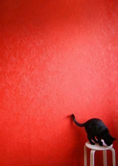 Noir Phat chatte lèvres