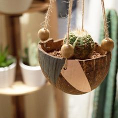 Coconut Shell Hanging Planter Handmade by MermaidBlueLagoon