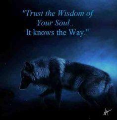 Black Wolf Trust the Wisdom Wolf Qoutes, Lone Wolf Quotes, Wisdom Quotes, True Quotes, Motivational Quotes, Inspirational Quotes, Talking To The Moon, Wolf Spirit Animal, Wolf Love