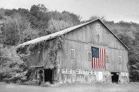 Patriotic Farm II