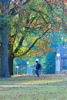 UTM Quad by The University of Tennessee at Martin, via Flickr : Discover UT Martin