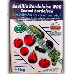 Zeama Bordeleza WDG Gardening, Blog, Plant, Life, Garten, Lawn And Garden, Garden, Square Foot Gardening, Garden Care